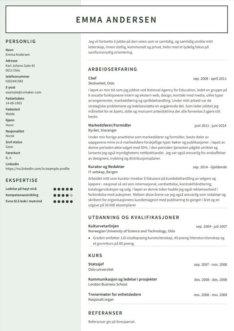 CV eksempel - Leder som leter etter tjeneste